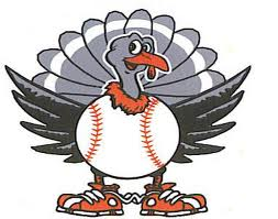 thanksgiving_turkeybaseball via bloguin.com