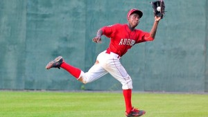 Robles is a beatt. Photo via milb.com